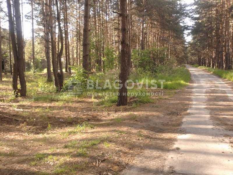 Земельный участок H-27791, Лебедевка (Вышгородский) - Фото 1