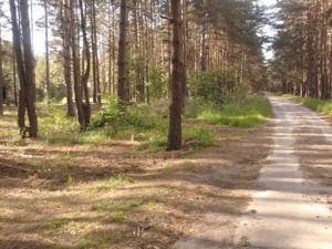 Земельный участок Лебедевка (Вышгородский), H-27791 - Фото