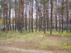 Земельный участок Лебедевка (Вышгородский), H-27791 - Фото2