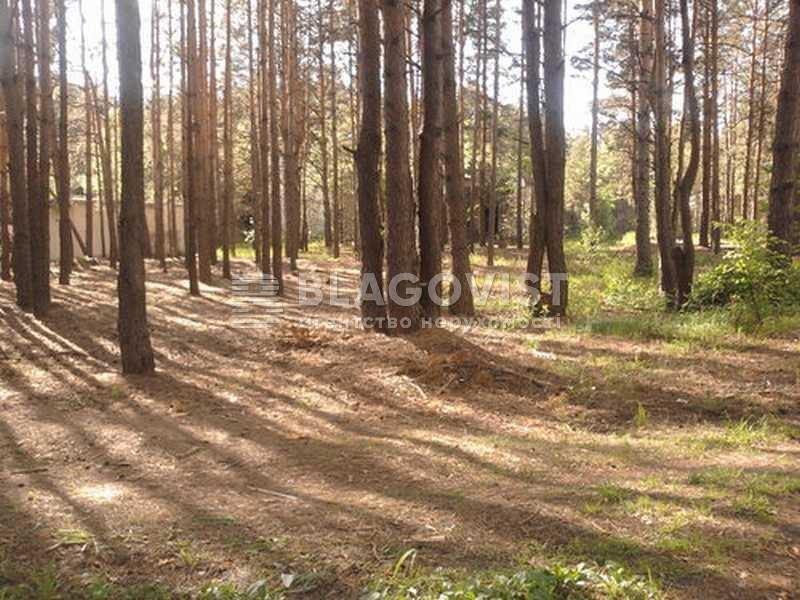 Земельный участок H-27791, Лебедевка (Вышгородский) - Фото 3