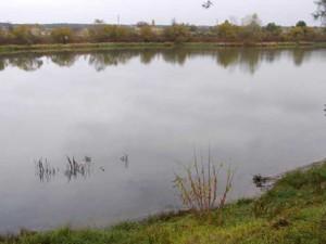 Земельна ділянка Лебедівка (Вишгородський), H-27791 - Фото 4