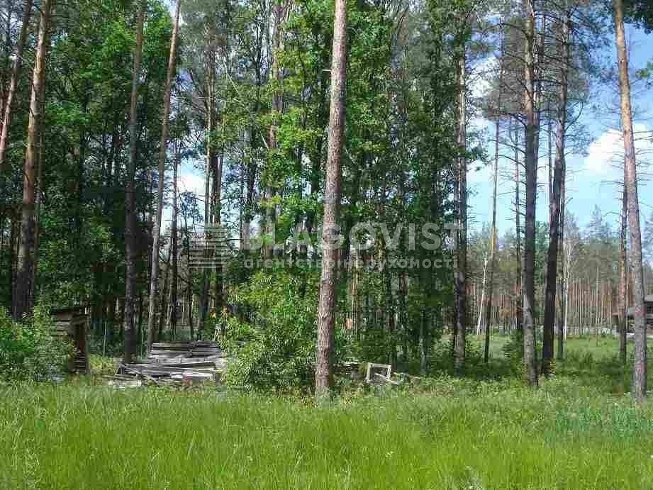 Дом Z-988845, Мощун (Киево-Святошинский) - Фото 17