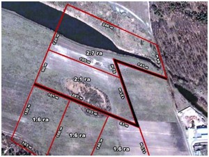 Земельна ділянка Літки, M-17306 - Фото 5