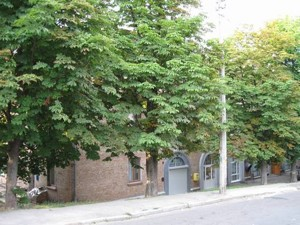 Квартира Монтажників, 44, Київ, Z-628970 - Фото