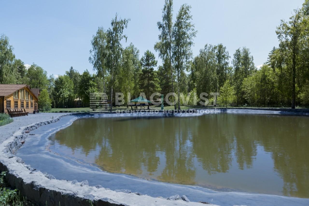 Майновий комплекс, A-107738, Лісова, Калинівка (Васильківський) - Фото 22