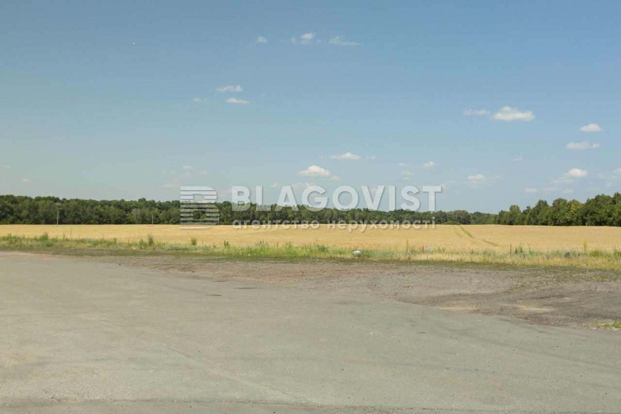 Майновий комплекс, A-107738, Лісова, Калинівка (Васильківський) - Фото 34
