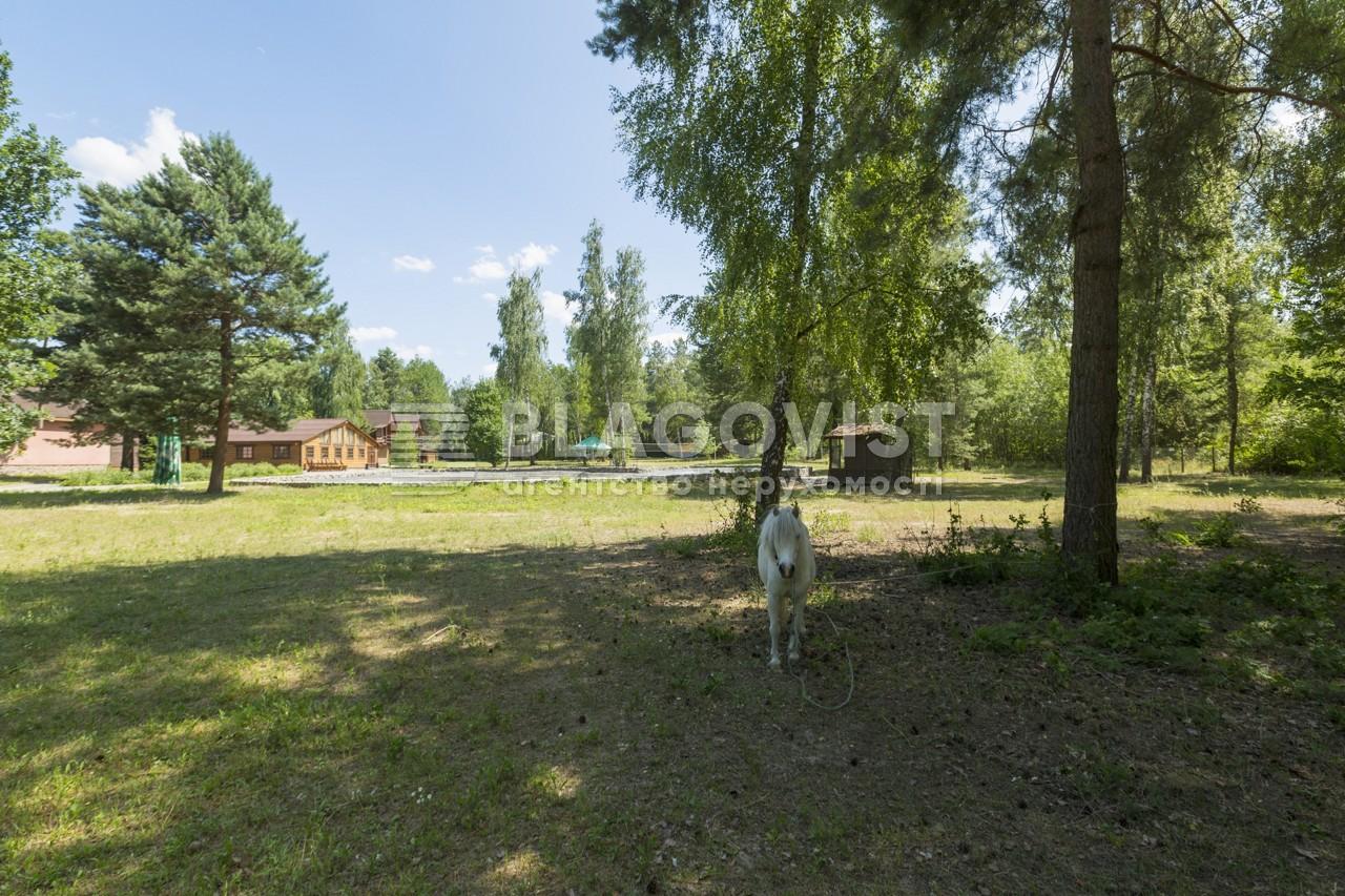 Майновий комплекс, A-107738, Лісова, Калинівка (Васильківський) - Фото 26
