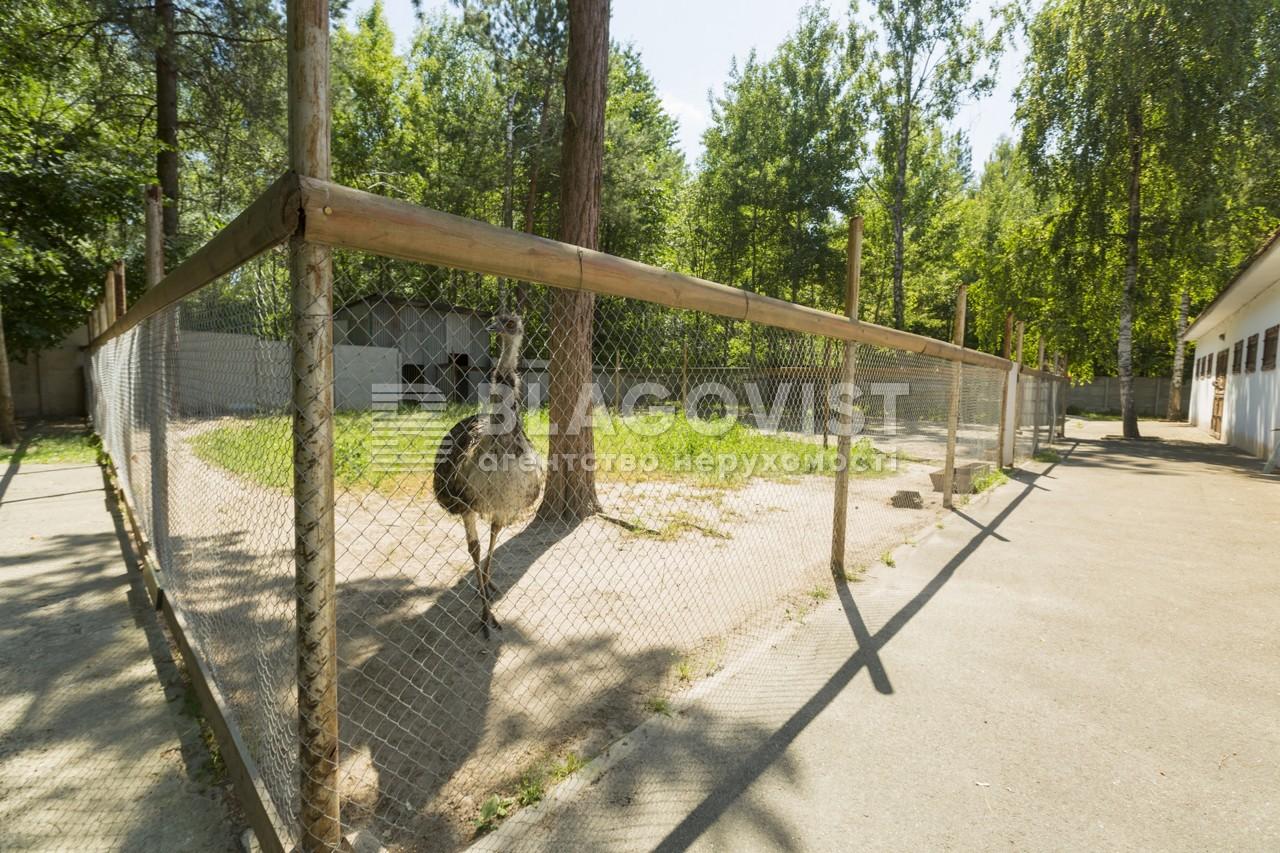 Майновий комплекс, A-107738, Лісова, Калинівка (Васильківський) - Фото 27