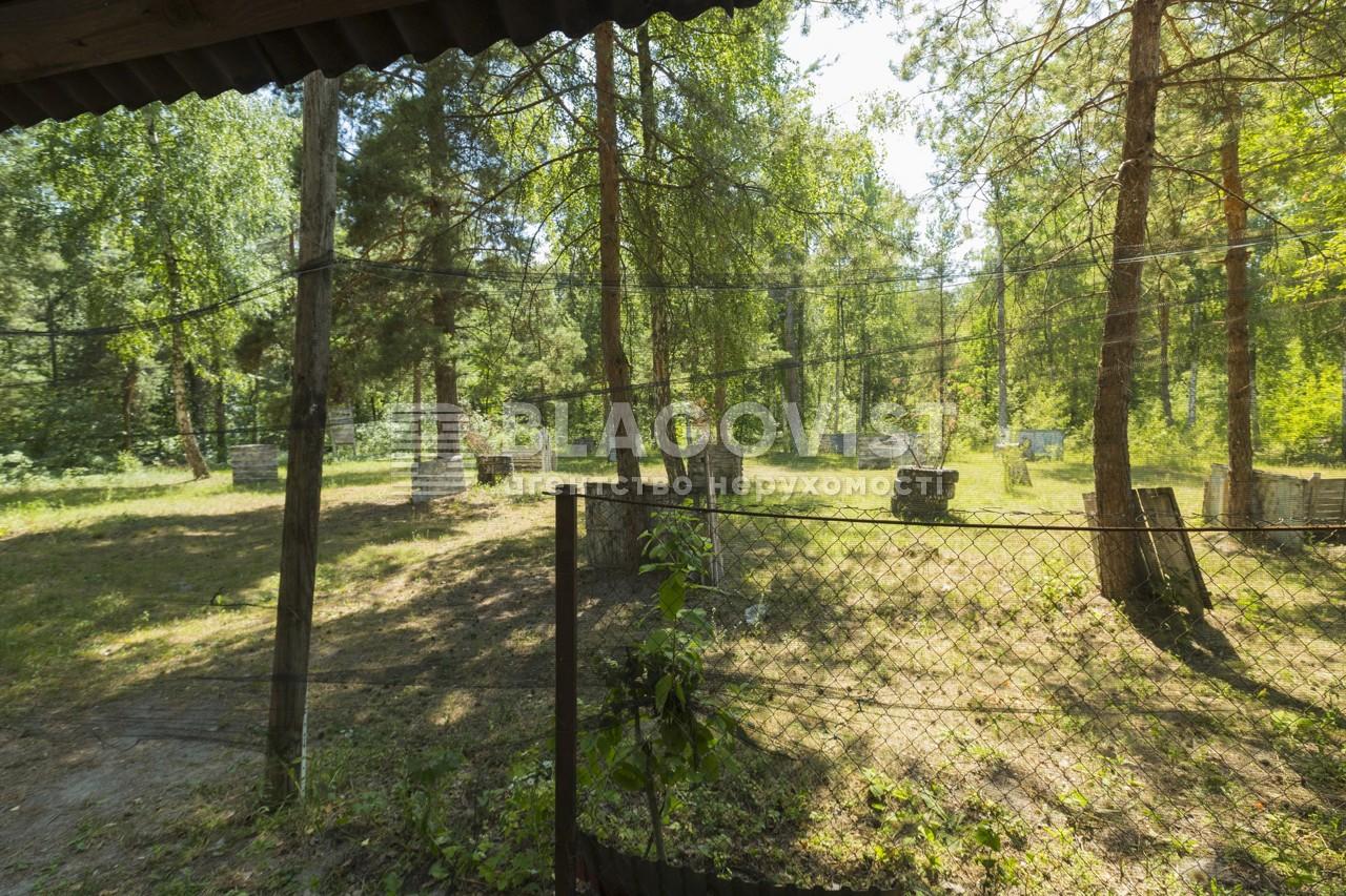Майновий комплекс, A-107738, Лісова, Калинівка (Васильківський) - Фото 28