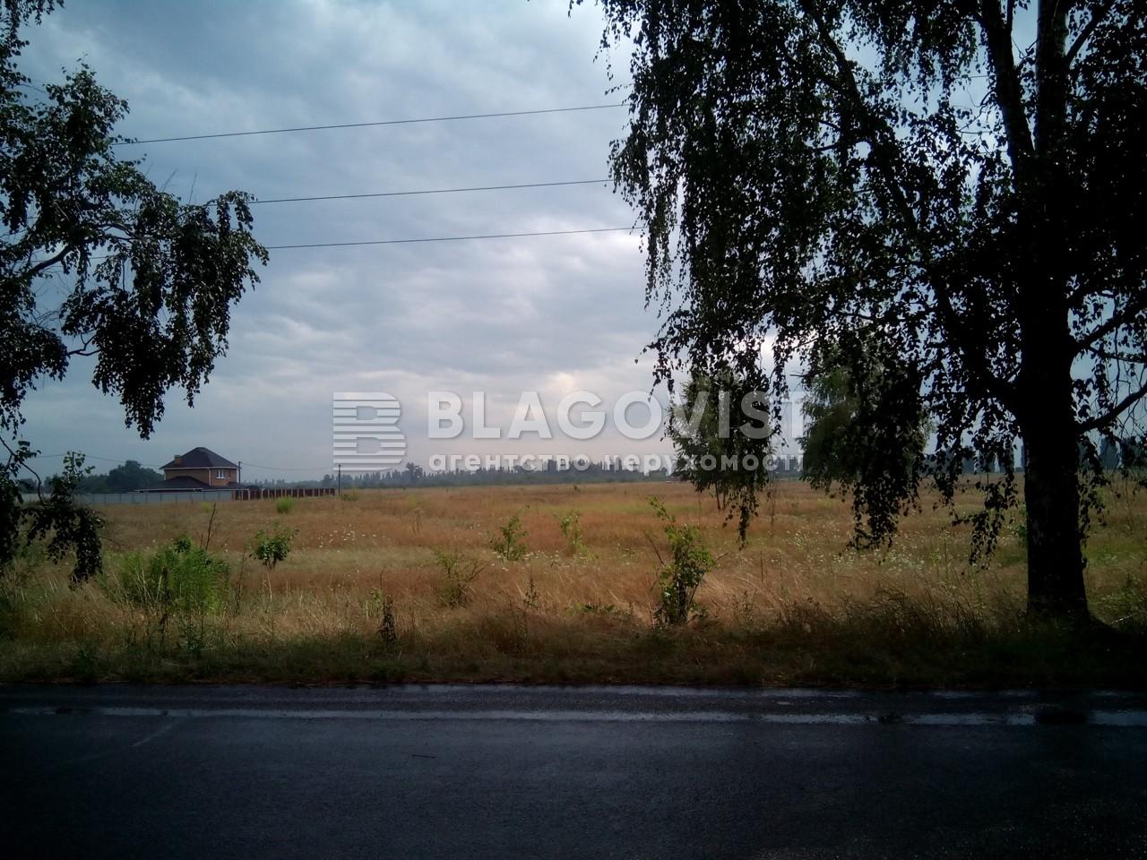 Земельный участок R-6641, Петровское (Бориспольский) - Фото 1