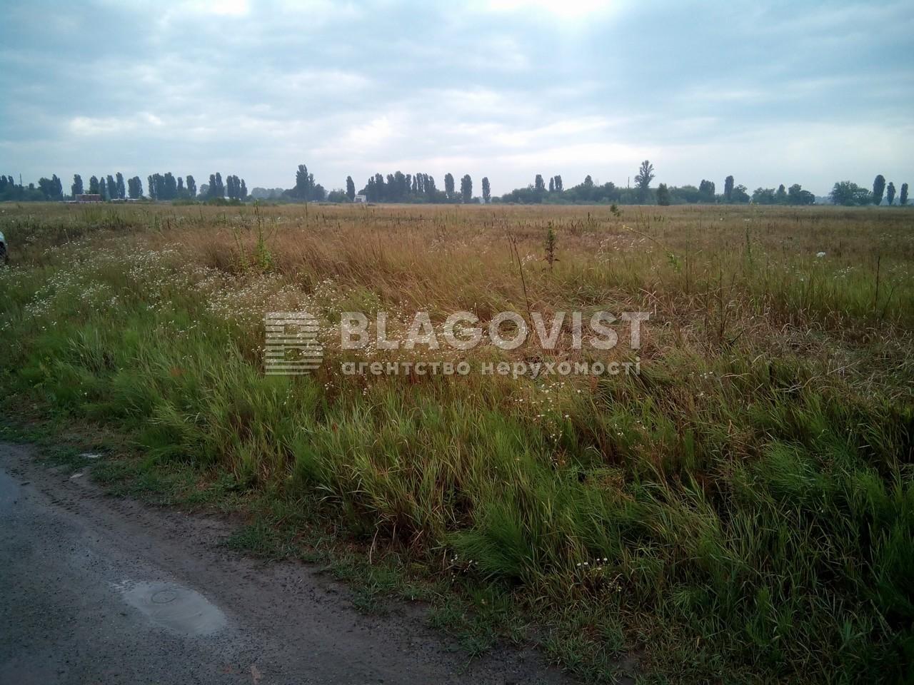 Земельный участок R-6641, Петровское (Бориспольский) - Фото 3