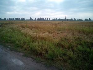 Земельный участок Петровское (Бориспольский), R-6641 - Фото3