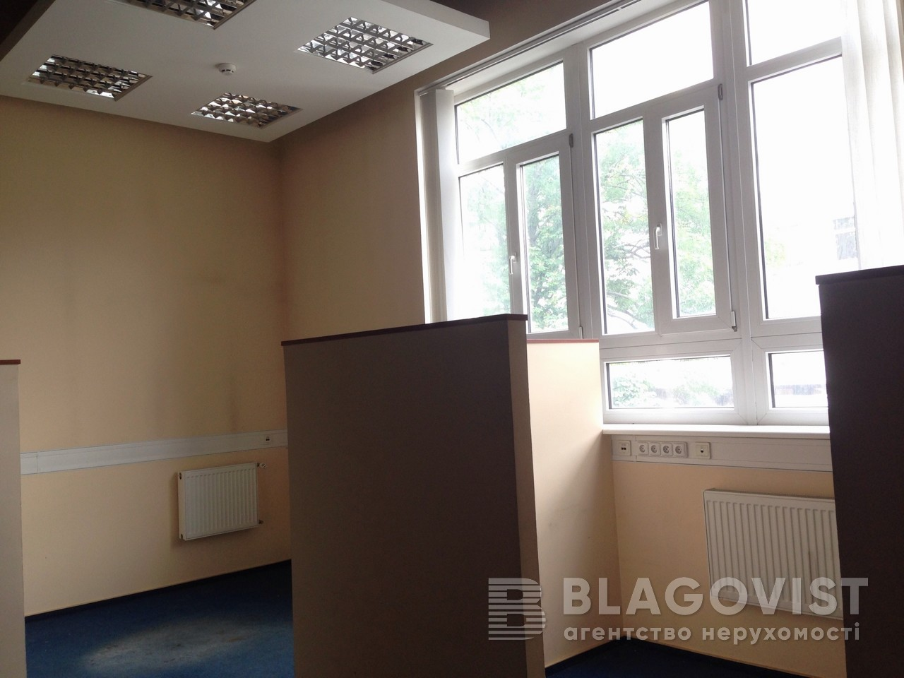 Нежилое помещение, D-32711, Владимирская, Киев - Фото 10