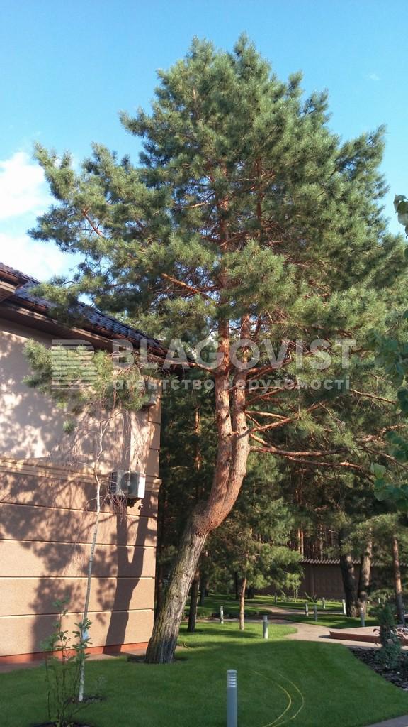 Дом Z-386135, Лебедевка (Вышгородский) - Фото 16