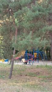 Дом Лебедевка (Вышгородский), Z-386135 - Фото 17