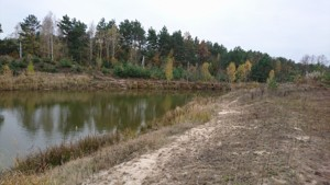 Земельный участок Дзвонковое, R-10234 - Фото2