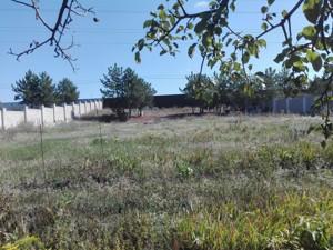 Земельный участок F-38496, Старокиевская, Козин (Конча-Заспа) - Фото 4
