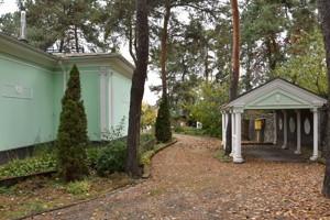 Дом Лесная, Софиевская Борщаговка, C-104506 - Фото 23