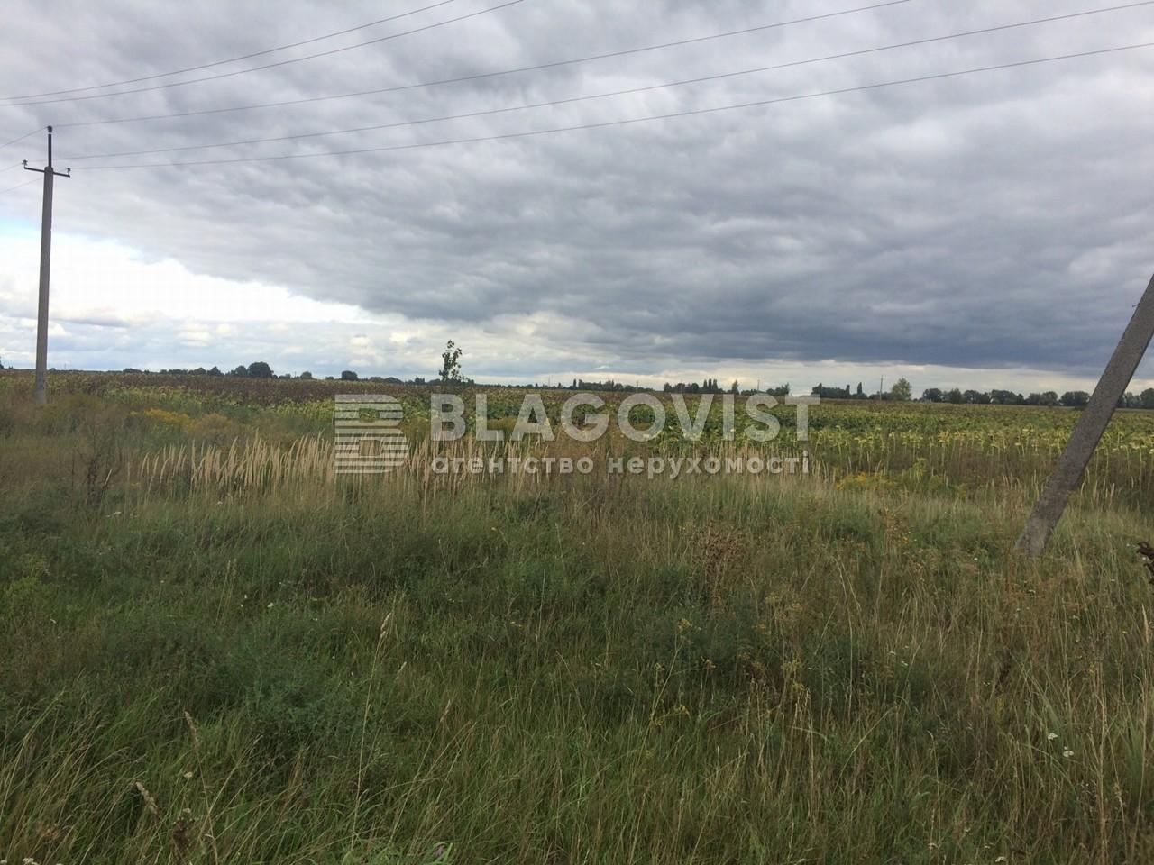 Земельный участок K-949, Борисполь - Фото 2