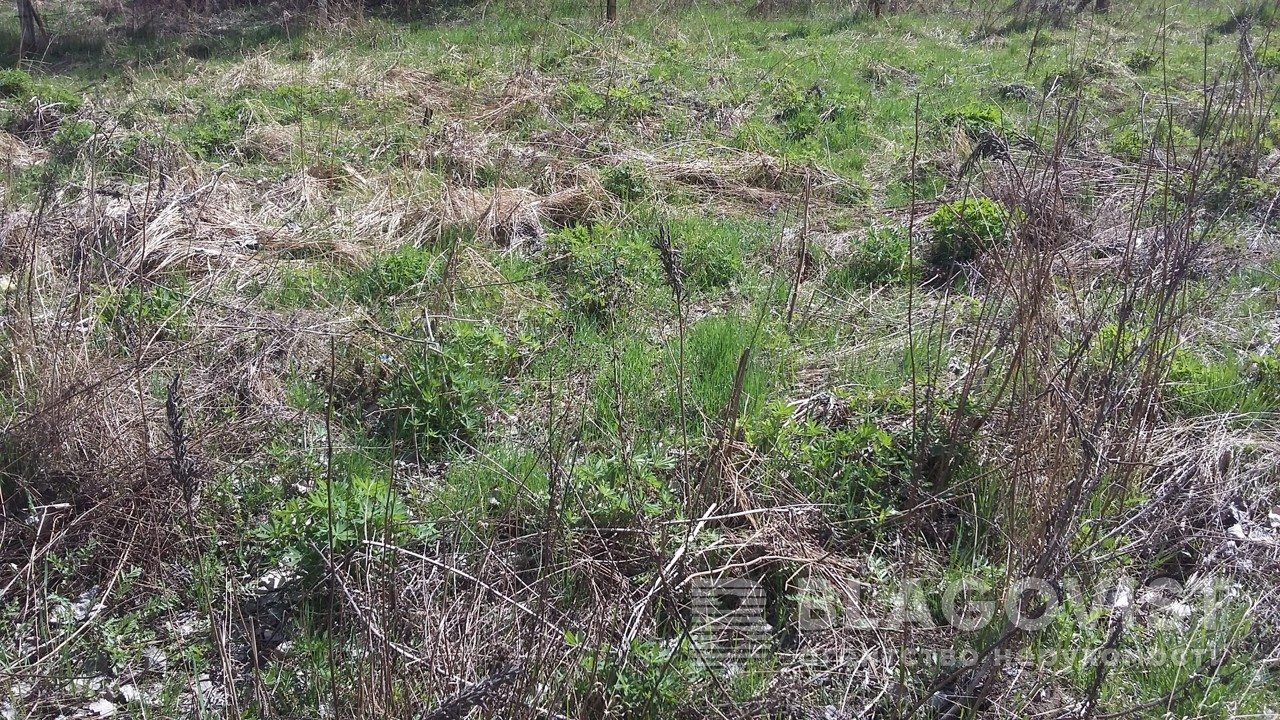 Земельный участок H-40876, Немешаево (Бородянский) - Фото 2