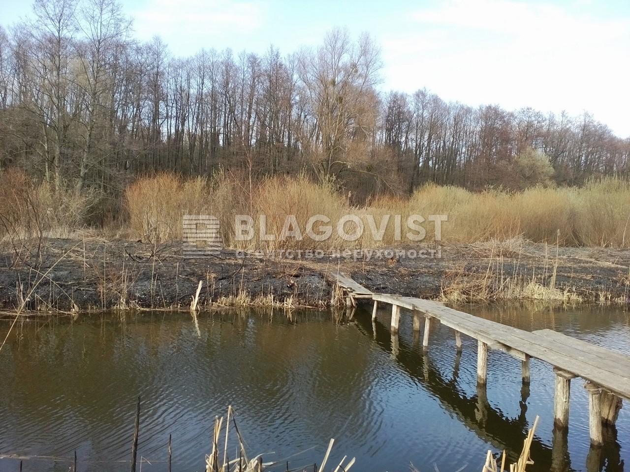 Земельный участок H-40933, Набережная, Ходосовка - Фото 5