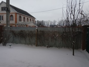 Будинок Незалежності, Святопетрівське (Петрівське), Z-1449528 - Фото