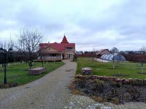 Будинок Лісова, Княжичі (Броварський), P-23446 - Фото3