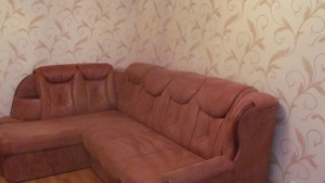 Квартира Пчелки Елены, 2, Киев, C-104483 - Фото3