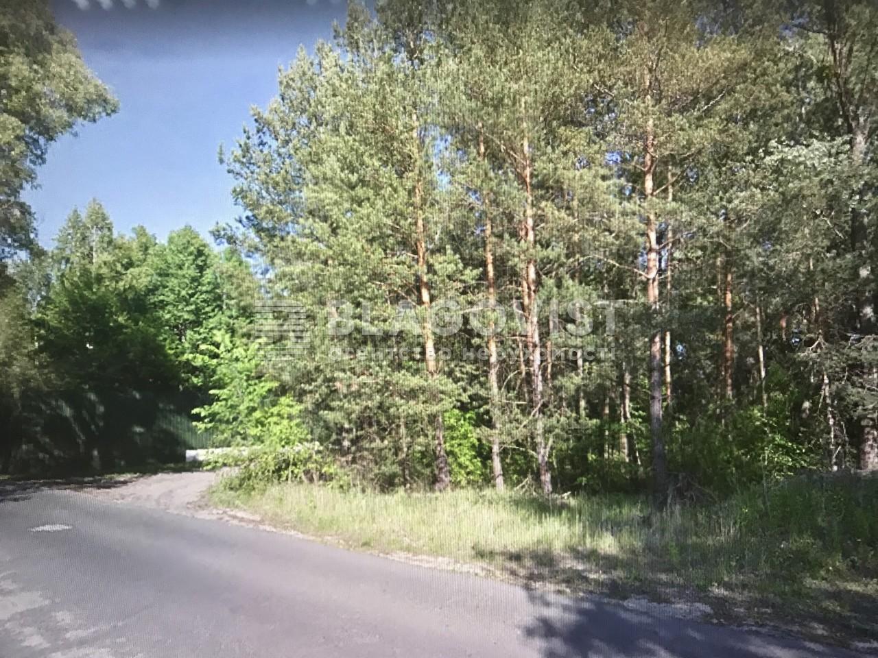 Земельный участок F-40174, Плюты (Конча-Заспа) - Фото 2