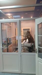 Нежилое помещение, Джона Маккейна (Кудри Ивана), Киев, Z-641865 - Фото 8
