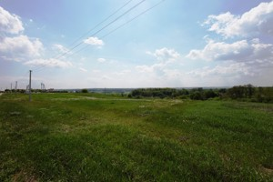 Land Molodizhna, Stari Bezradychi, R-19427 - Photo2