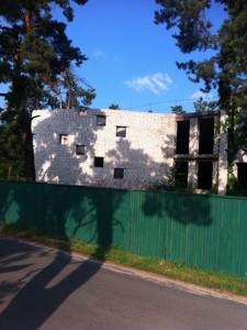 Окремо розташована будівля, Солов'яненка, Козин (Конча-Заспа), R-19759 - Фото 2