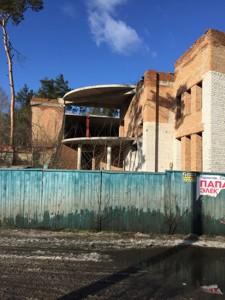 Окремо розташована будівля, Солов'яненка, Козин (Конча-Заспа), R-19759 - Фото
