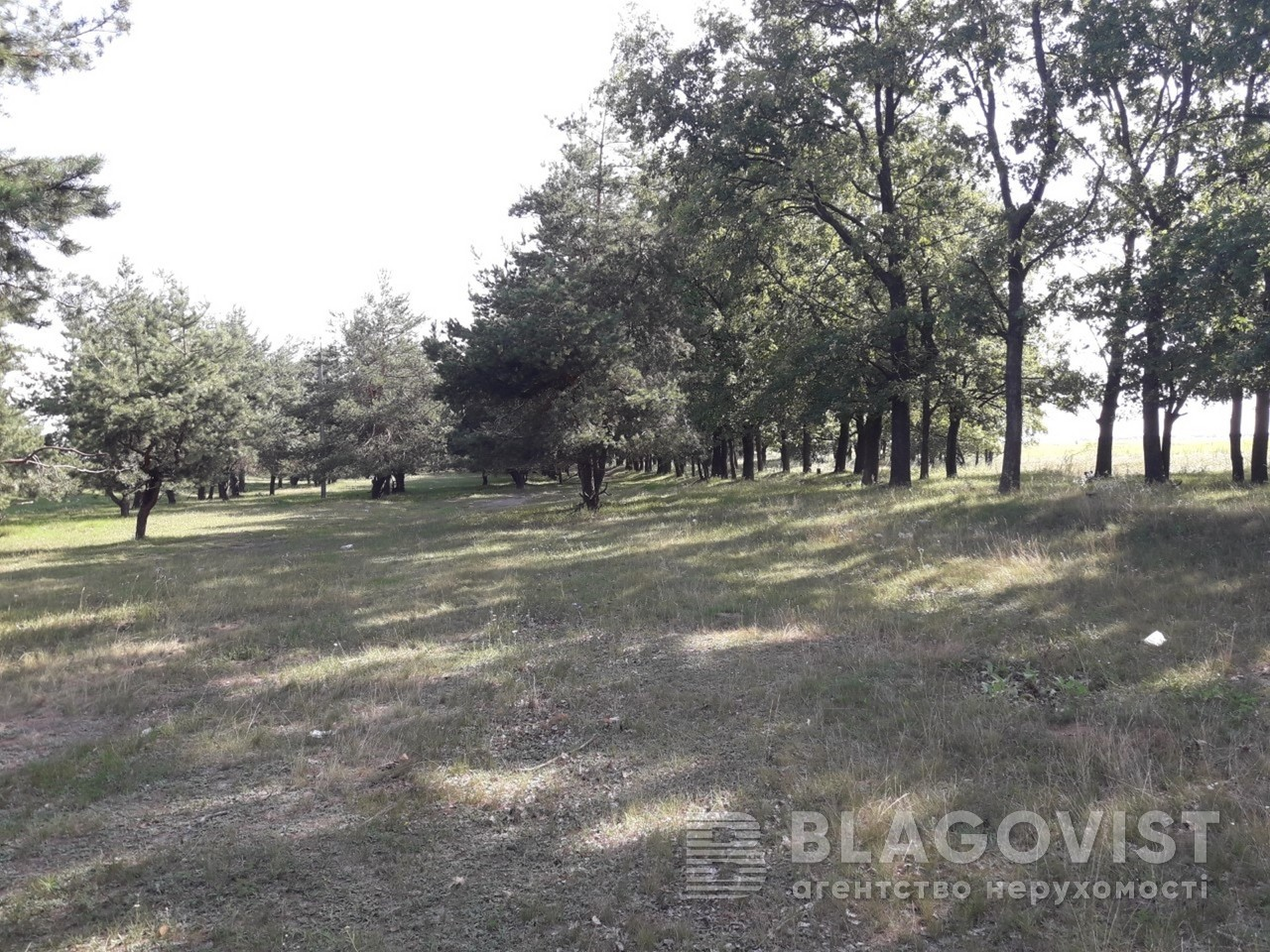 Земельный участок M-33860, Малая Александровка - Фото 1