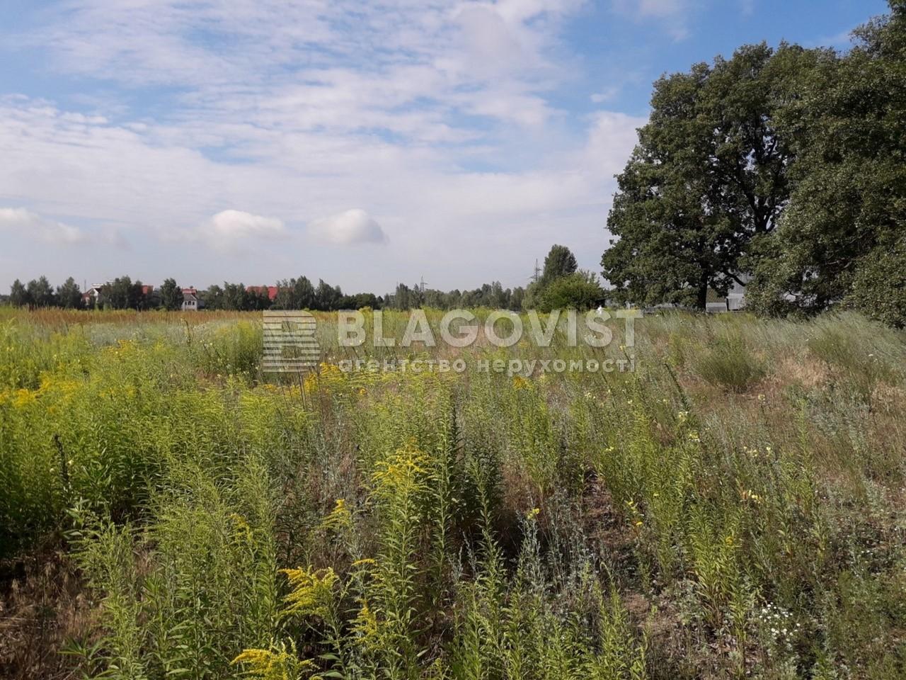 Земельный участок M-33860, Малая Александровка - Фото 4