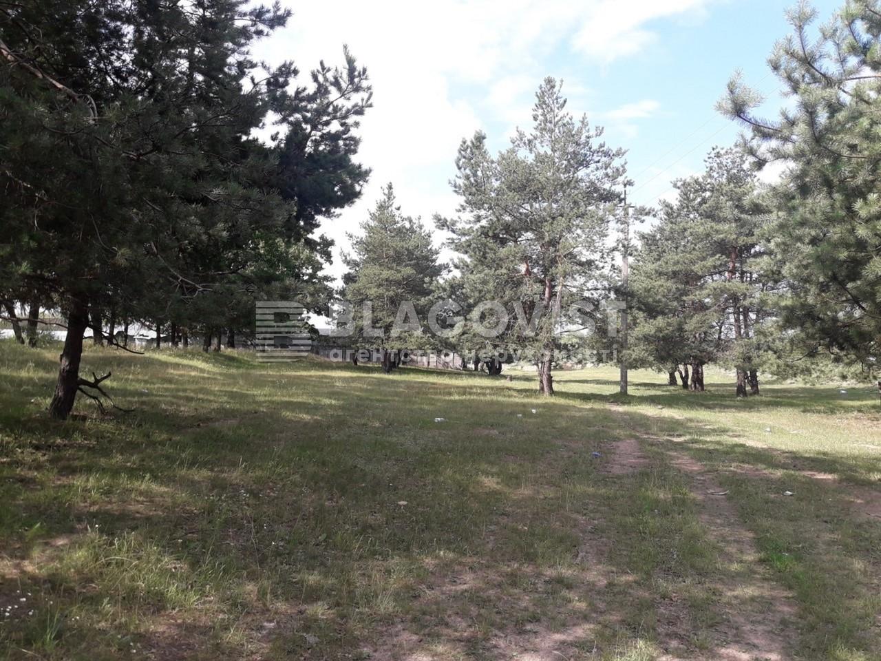 Земельный участок M-33860, Малая Александровка - Фото 5