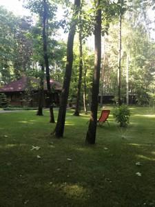 Будинок Сонячна, Дмитрівка (Києво-Святошинський), F-40431 - Фото 14