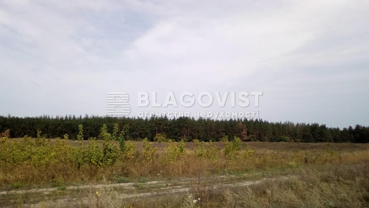 Земельный участок P-24353, Погребы (Васильковский) - Фото 3