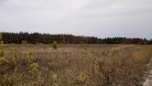 Земельный участок Погребы (Васильковский), P-24353 - Фото 4