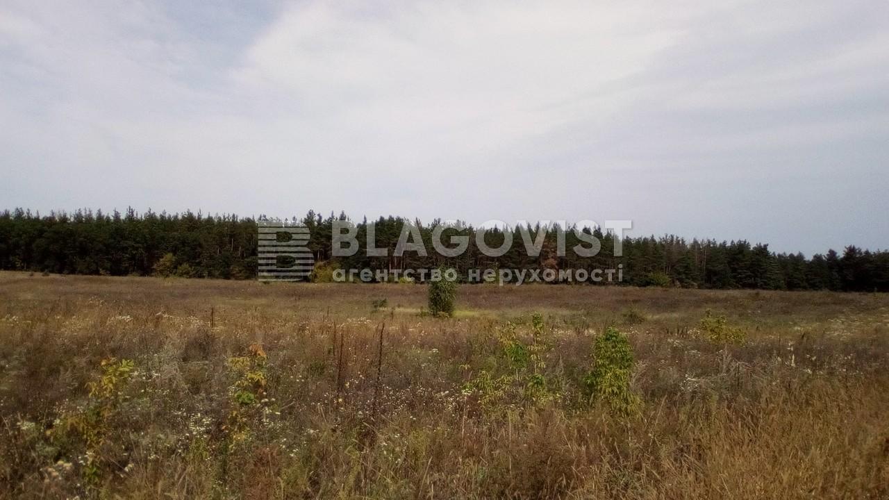 Земельный участок P-24353, Погребы (Васильковский) - Фото 6