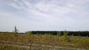 Земельный участок Погребы (Васильковский), P-24354 - Фото 2