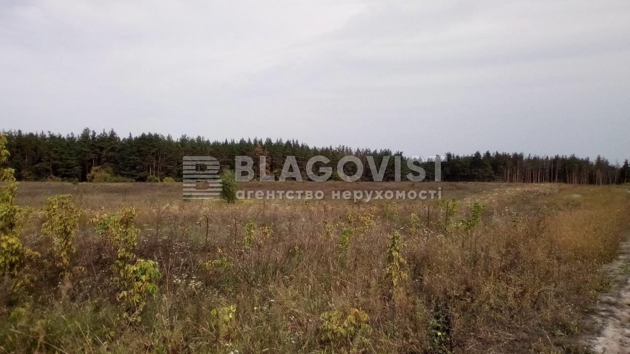 Земельный участок P-24354, Погребы (Васильковский) - Фото 4
