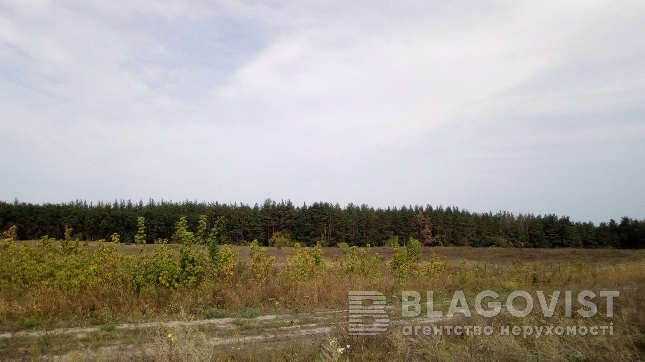 Земельный участок P-24355, Погребы (Васильковский) - Фото 3