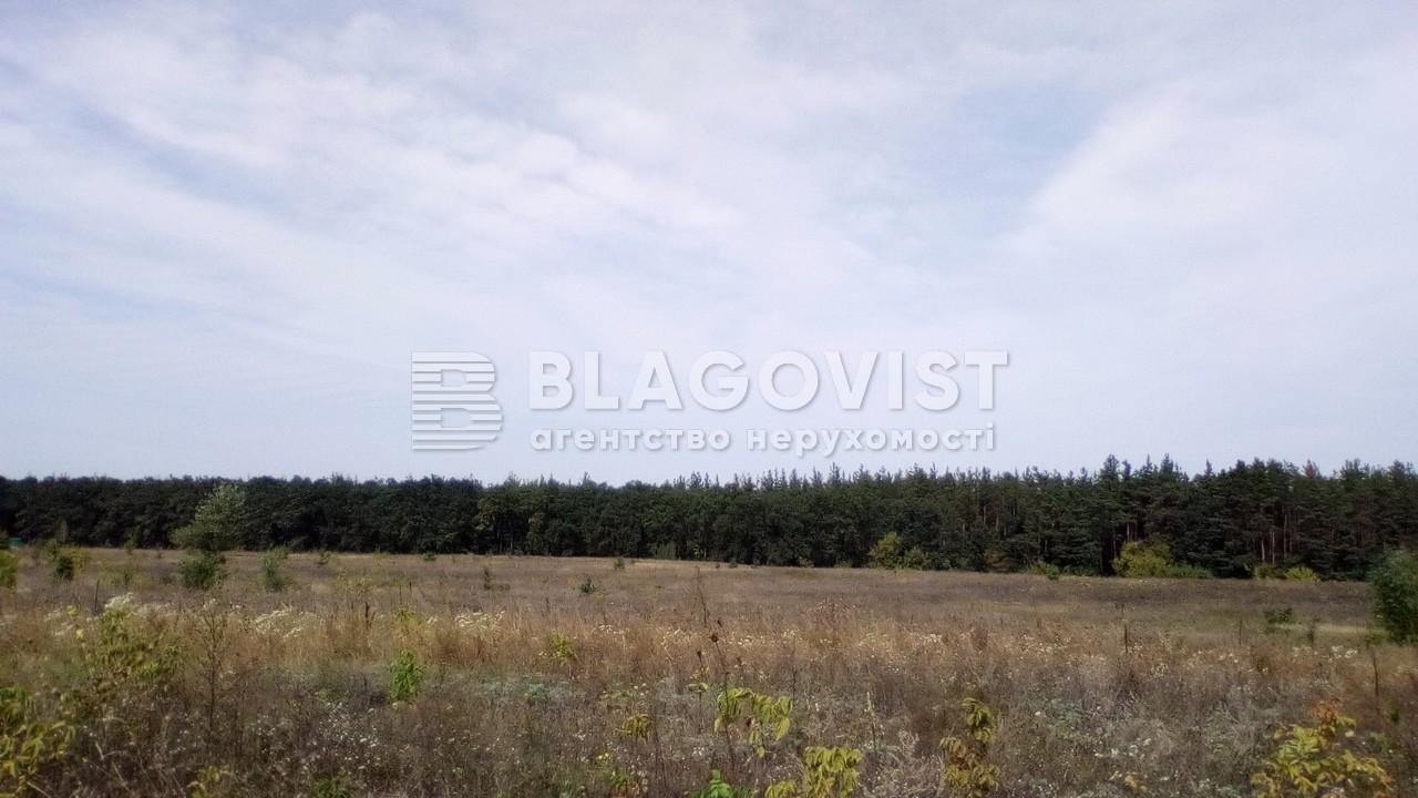 Земельный участок P-24355, Погребы (Васильковский) - Фото 5