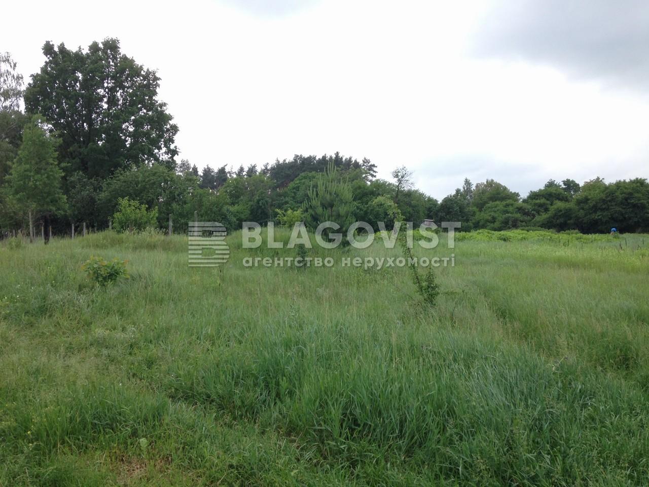Земельный участок C-105630, Пархоменко, Березанщина - Фото 3