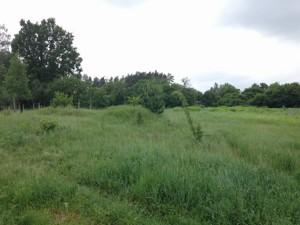 Земельный участок Пархоменко, Березанщина, C-105630 - Фото3