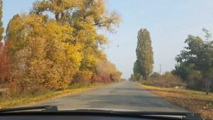 Земельный участок Петровское (Бориспольский), E-37900 - Фото 4