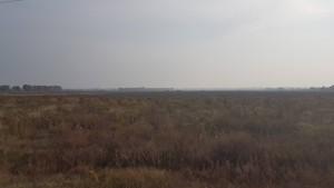 Земельный участок Петровское (Бориспольский), E-37900 - Фото 6