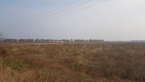 Земельный участок Петровское (Бориспольский), E-37900 - Фото 9