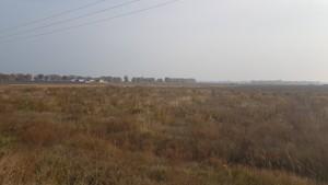 Земельный участок Петровское (Бориспольский), E-37900 - Фото 7